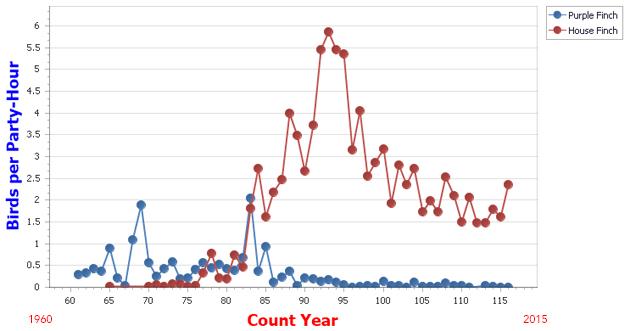 hofi_pufi-graph